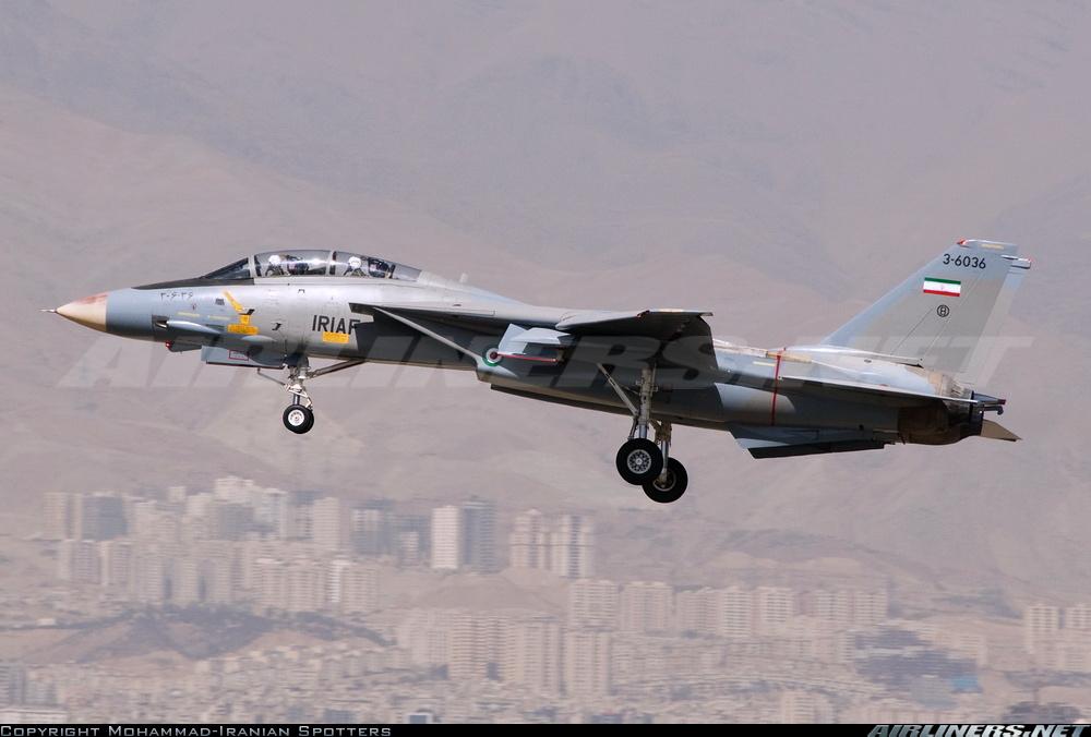 F-14 Tomcat 14043310