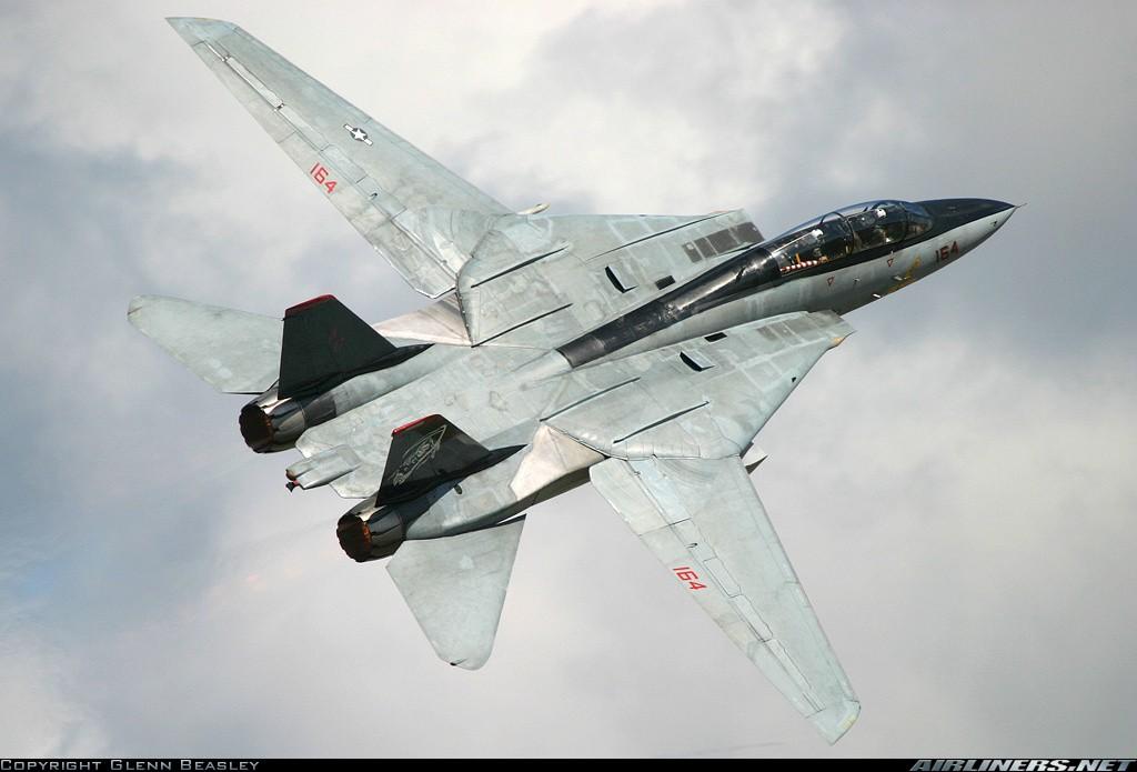F-14 Tomcat 14295910