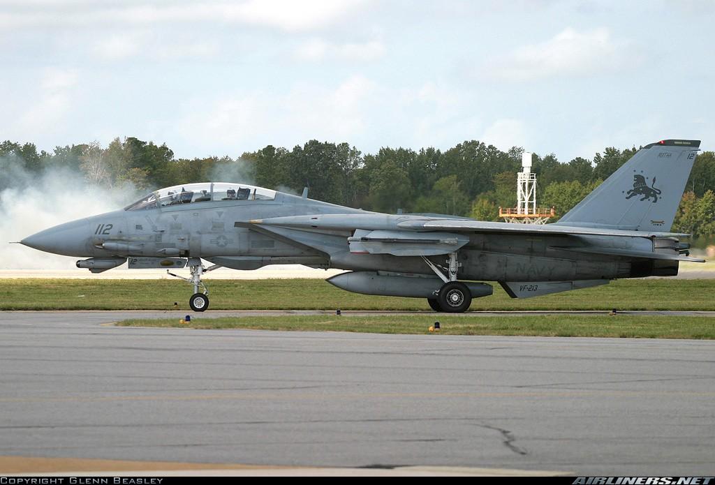 F-14 Tomcat 14296410
