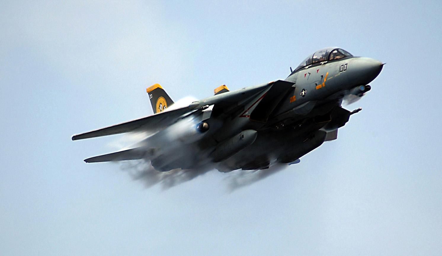 F-14 Tomcat - Page 2 F-14_t10