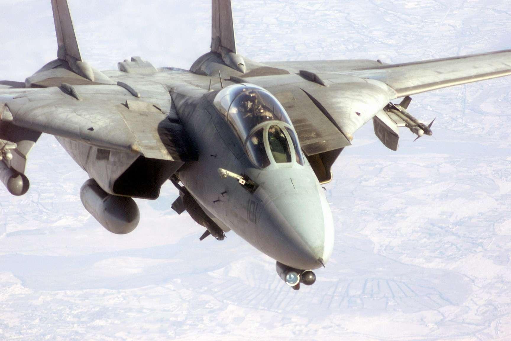 F-14 Tomcat - Page 2 F-14_t11