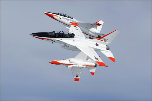 Les avions de chasse ''indigènes'' T50_410