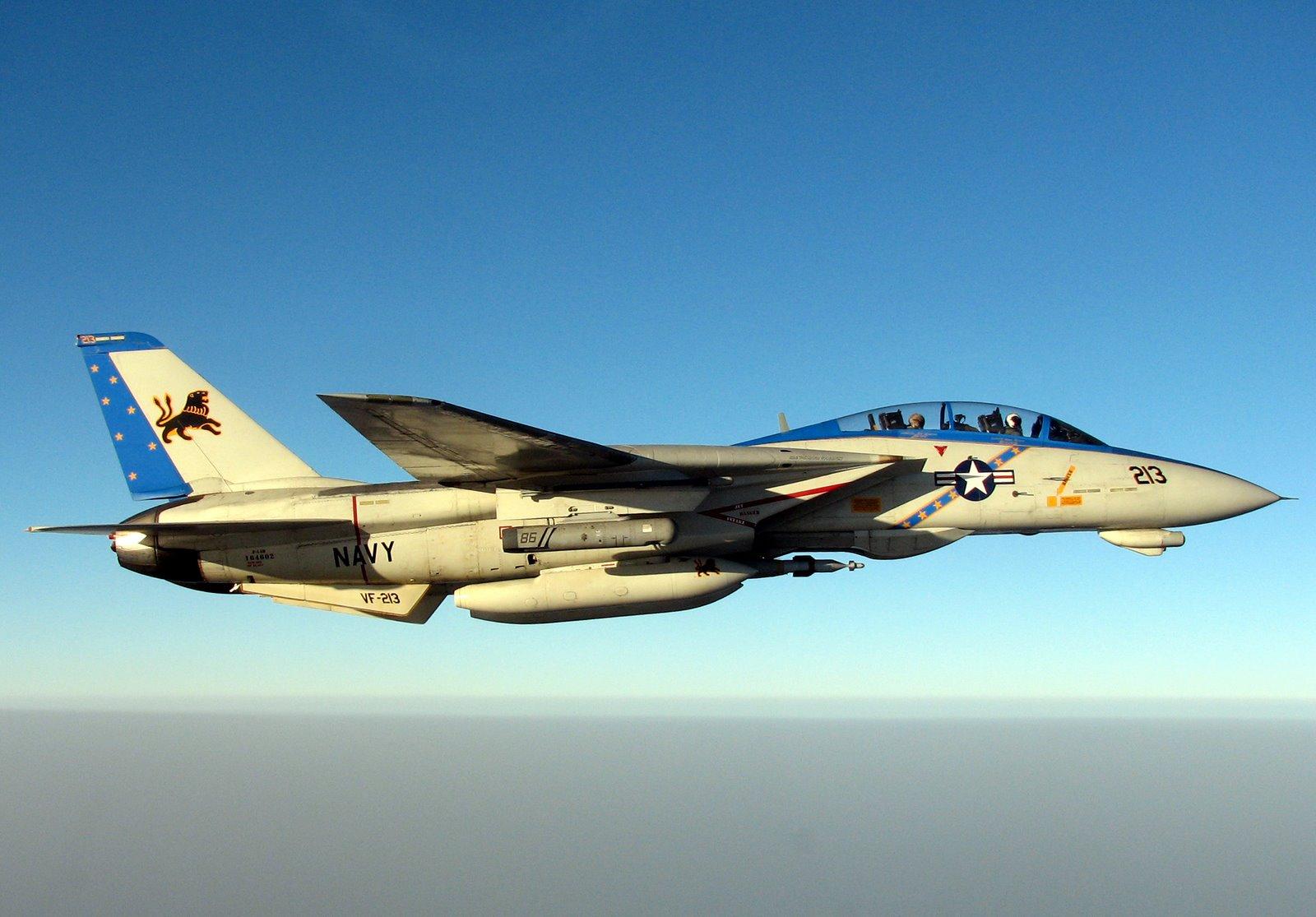 F-14 Tomcat - Page 2 Vf-21310