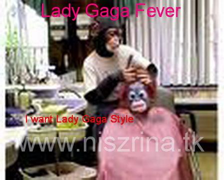 Lady Gaga Fever حصرياً حمى ليدي غاغا Niszri22