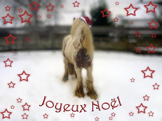 Bannière fêtes de fin d'année Noel10