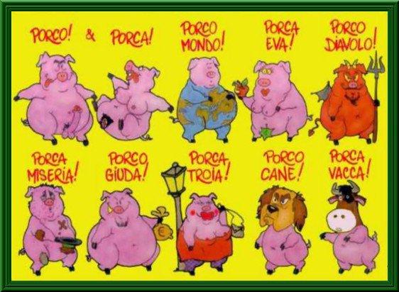 A proposito di maiali Porci10
