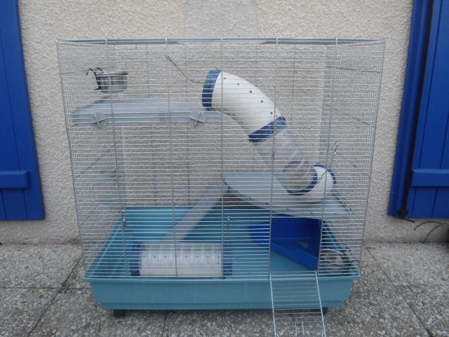 [Vend] Cage Jenny en RP L80__l10