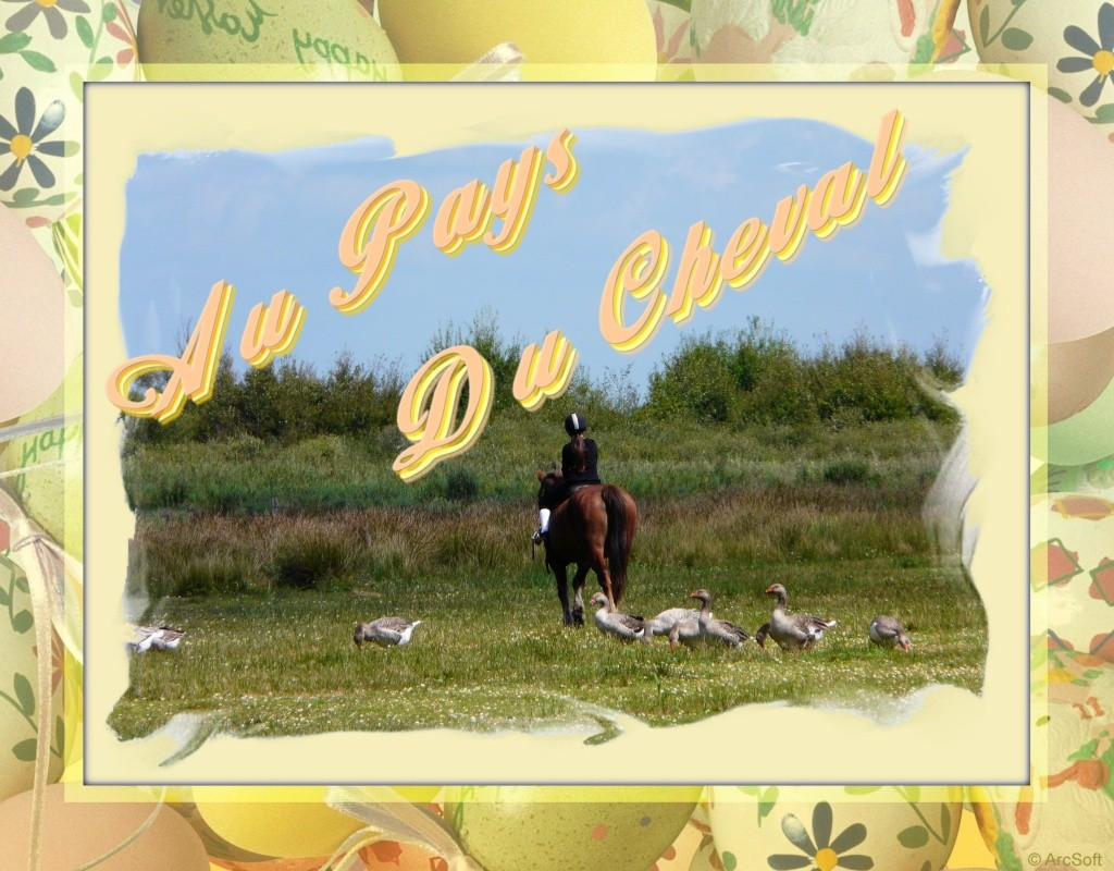 Au Pays du Cheval