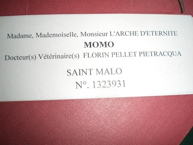 NE PROMENER PAS VOTRE TOUTOU SANS LAISSES - MERCI Momo_c11