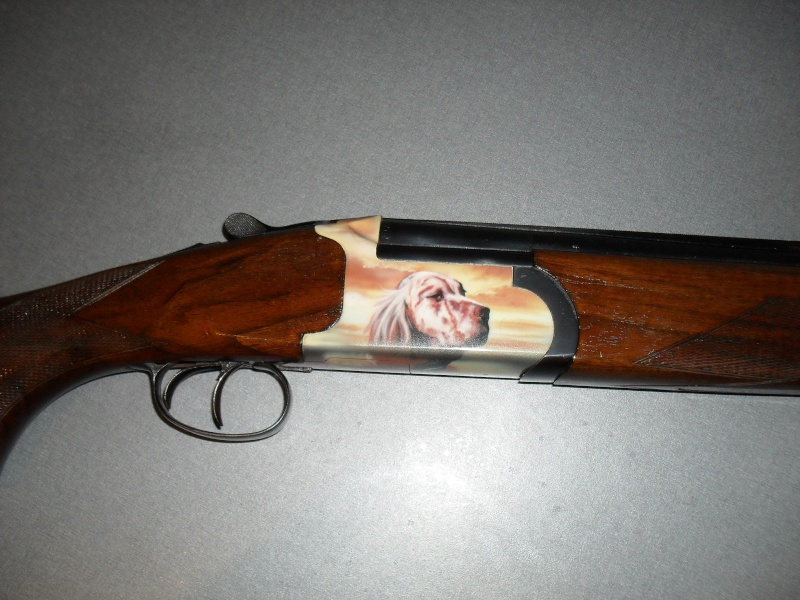 mes armes Sdc10520