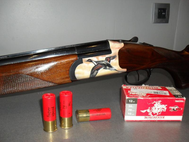 mes armes Sdc10522