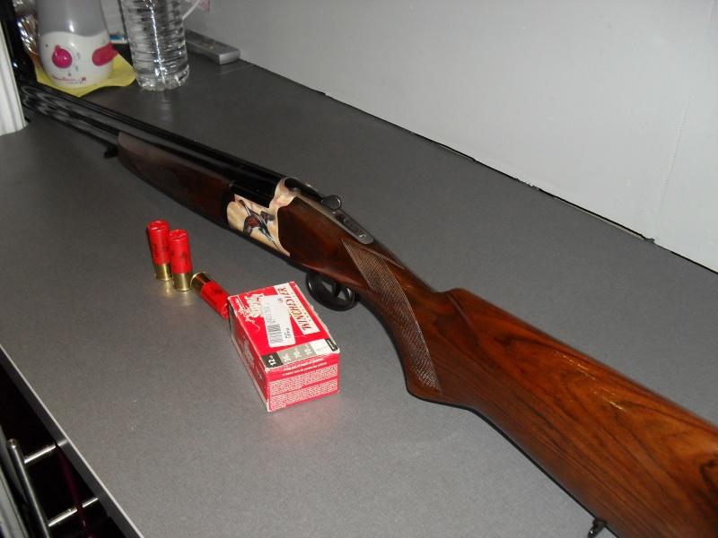 mes armes Sdc10523