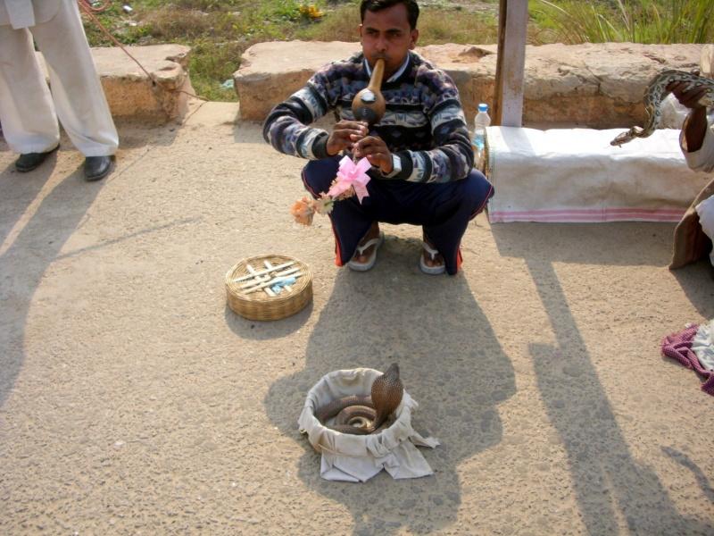 Inde, visite du Radjastan 00110