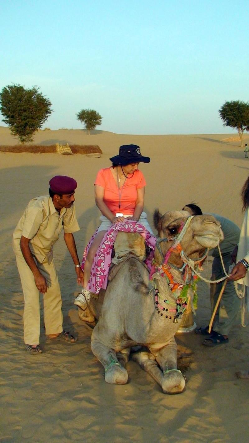 Inde, visite du Radjastan 1311