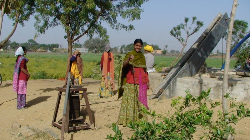 Inde, visite du Radjastan - Page 2 2511