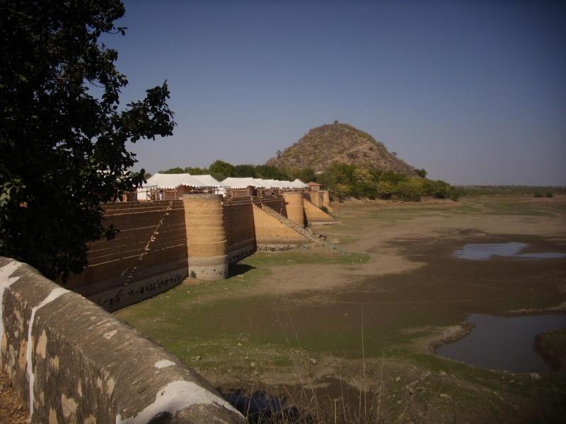 Inde, visite du Radjastan - Page 2 314
