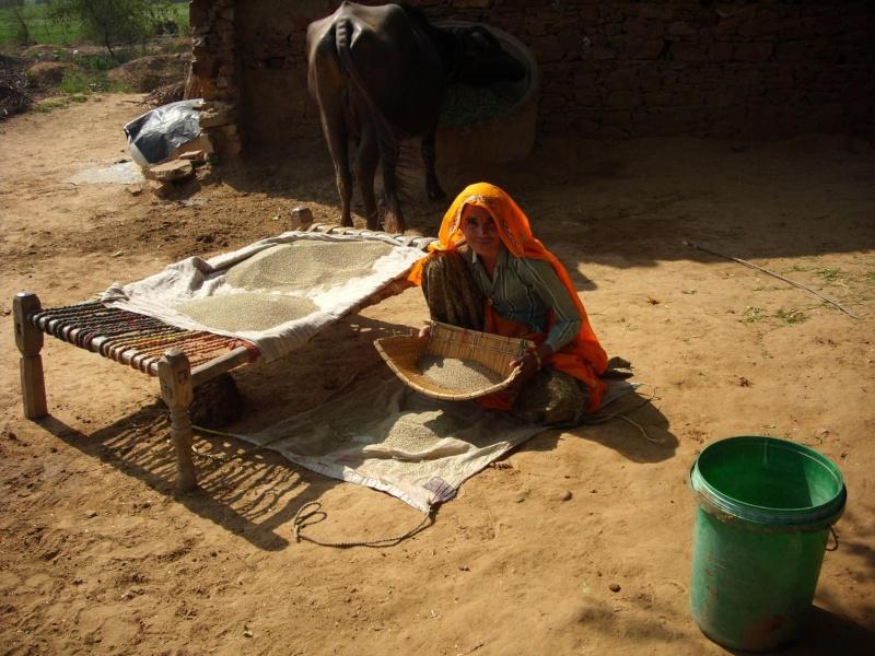 Inde, visite du Radjastan 710