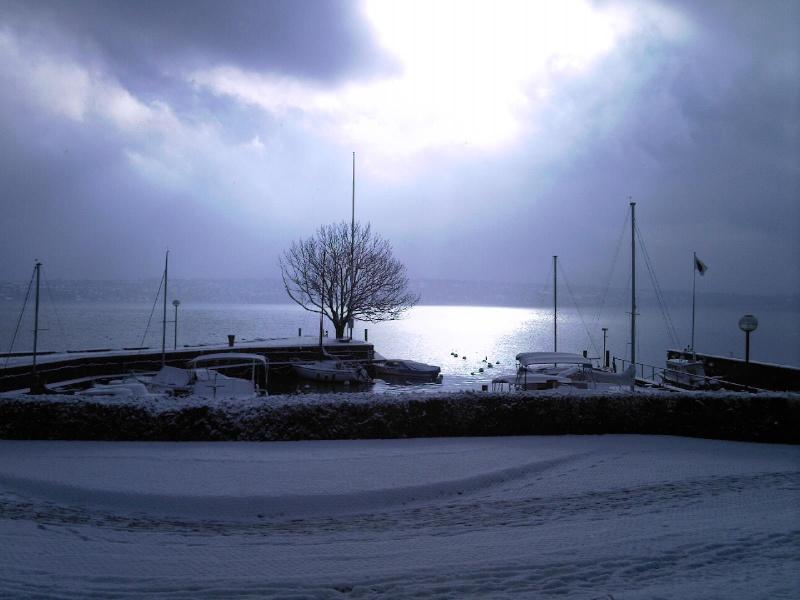 Photos de neige du coté de chez vous - Page 2 Bellev11