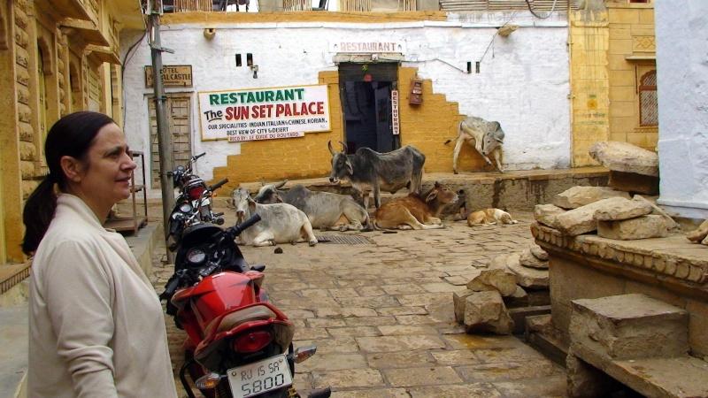 Inde, visite du Radjastan Jaisal21