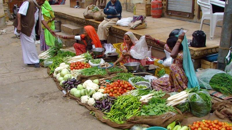 Inde, visite du Radjastan Jaisal22