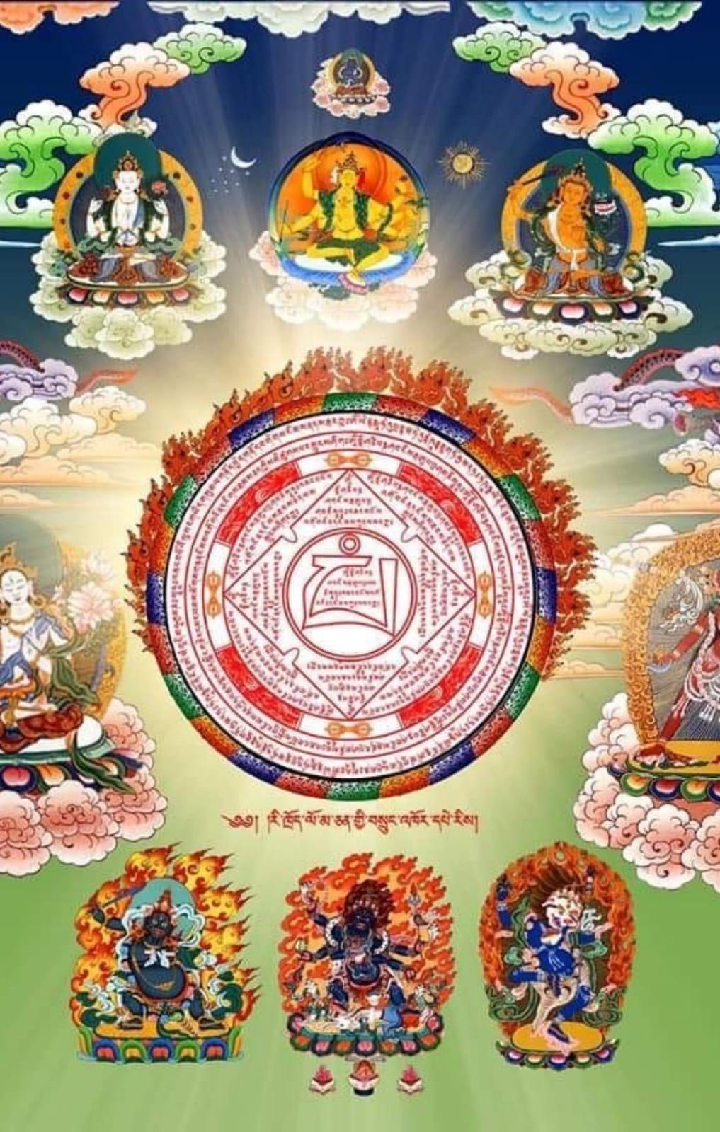 Médecine tibétaine et Covid-19 Img-2011