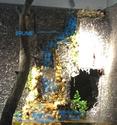 Aquarium Amazonien 720L avec mur végétale +cascade + Lagune  - Page 3 Captur30