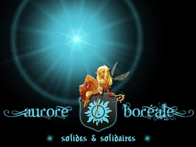• Aurore Boreale •