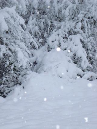 que de neige !! Dsc02310