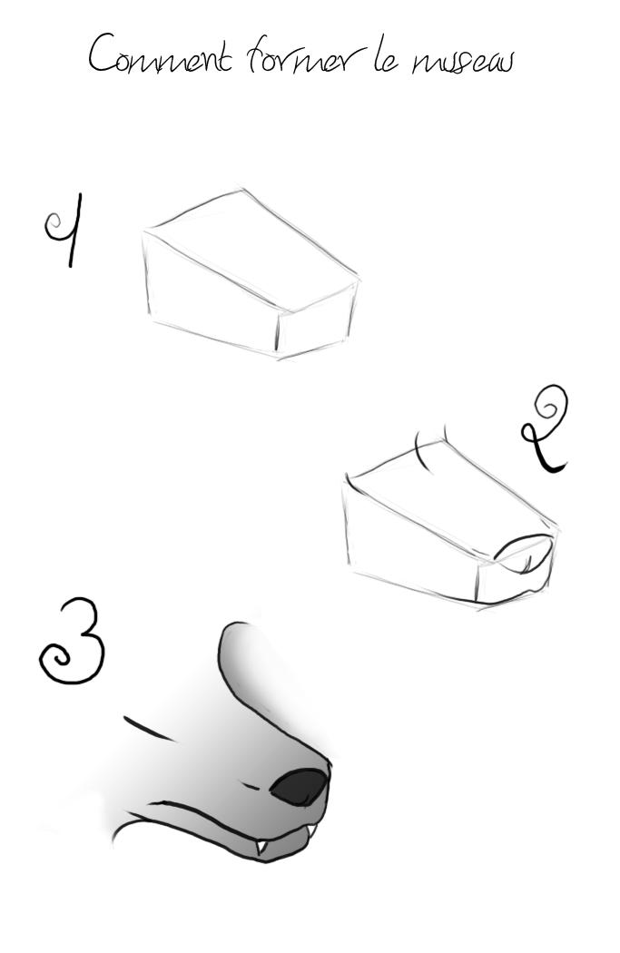 Loup caricatural ( buste ) [ Difficile + ] Tuto_m10