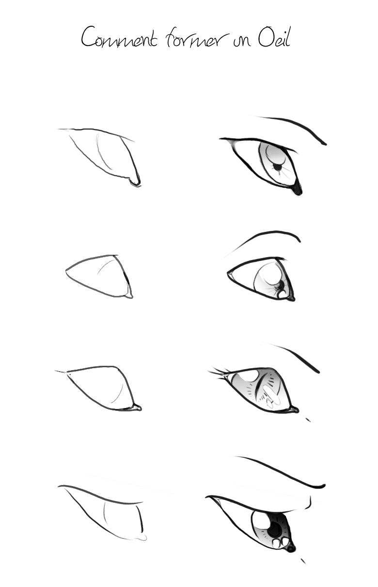 Loup caricatural ( buste ) [ Difficile + ] Tuto_o11