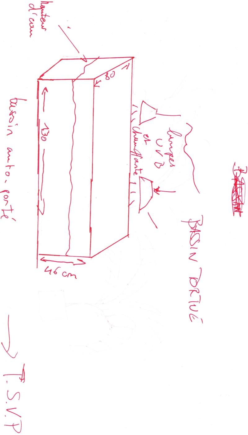 bassin d'intérieur pour tortues - Page 9 Bassin10