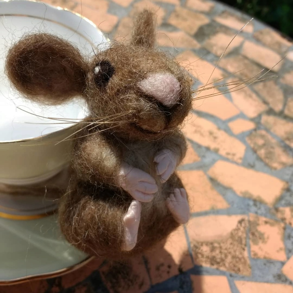 Mouse Img_2014