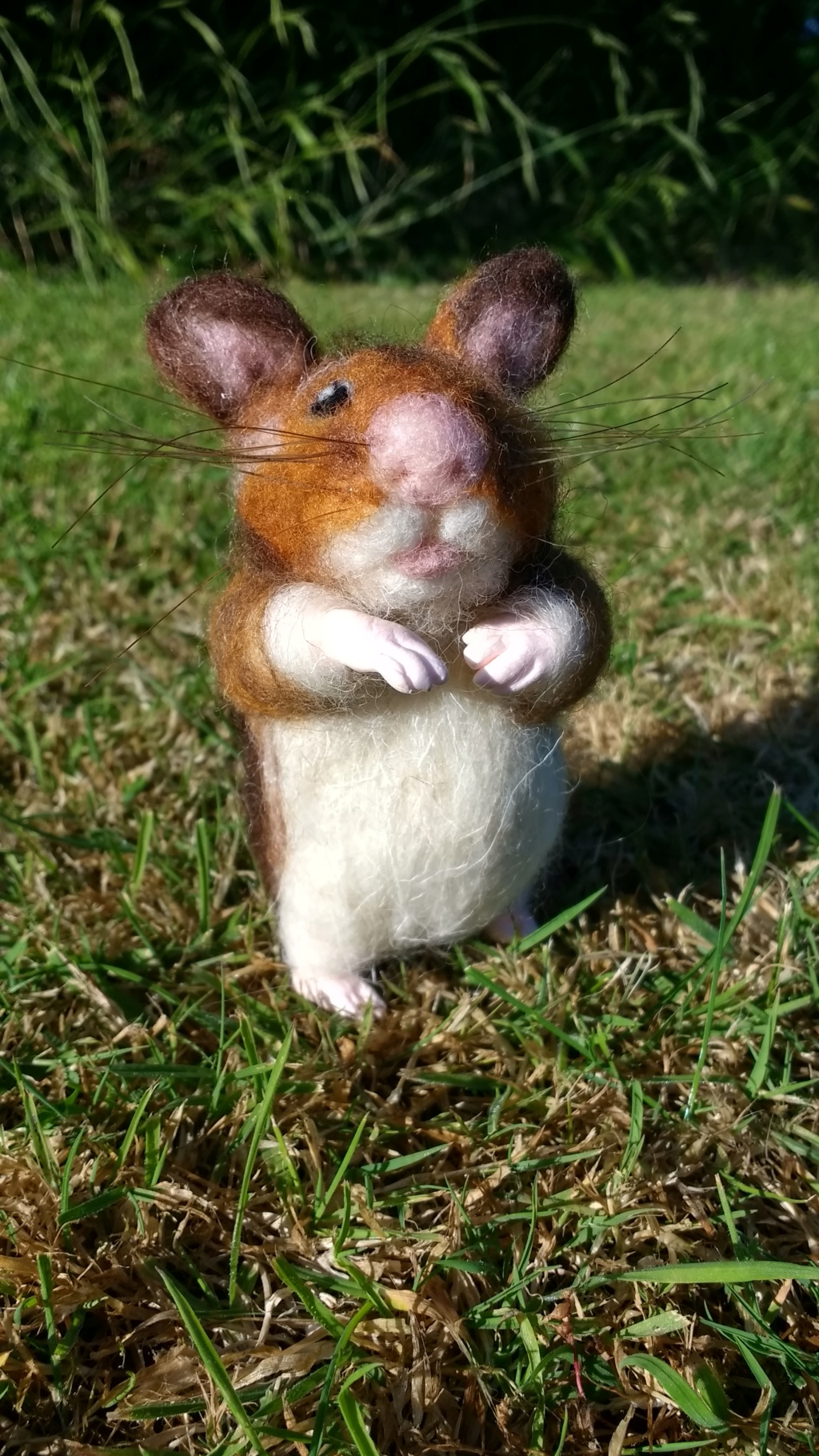 Hamster, commission. Img_2016