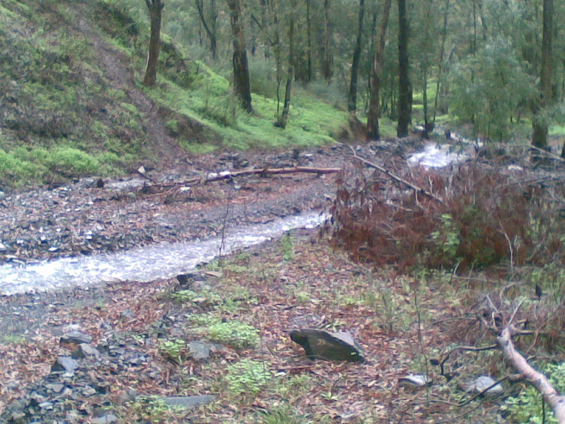 salida a los montes de malaga 19-12-2010 Imagen28