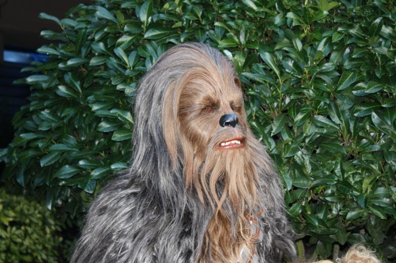 Retour des Personnages de Star Wars devant Star Tours ! - Page 8 Disney20