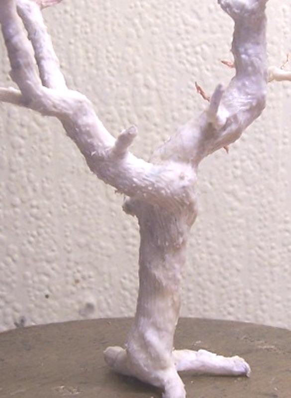 Le pas à pas dans la réalisation d'un arbre pour dio Arbre_34