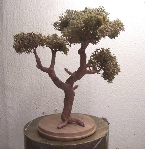 Le pas à pas dans la réalisation d'un arbre pour dio Arbre_39