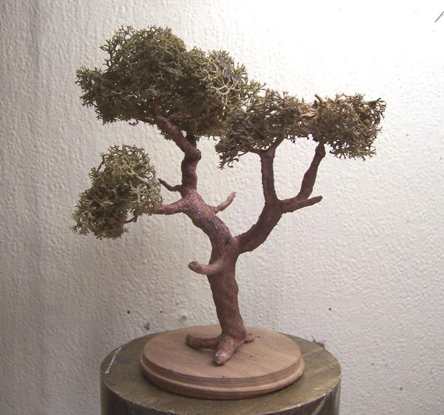 Le pas à pas dans la réalisation d'un arbre pour dio Arbre_40