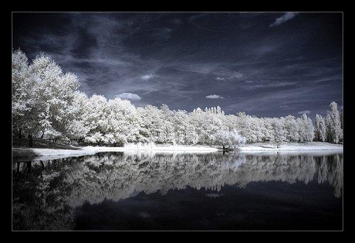 hivern10.jpg