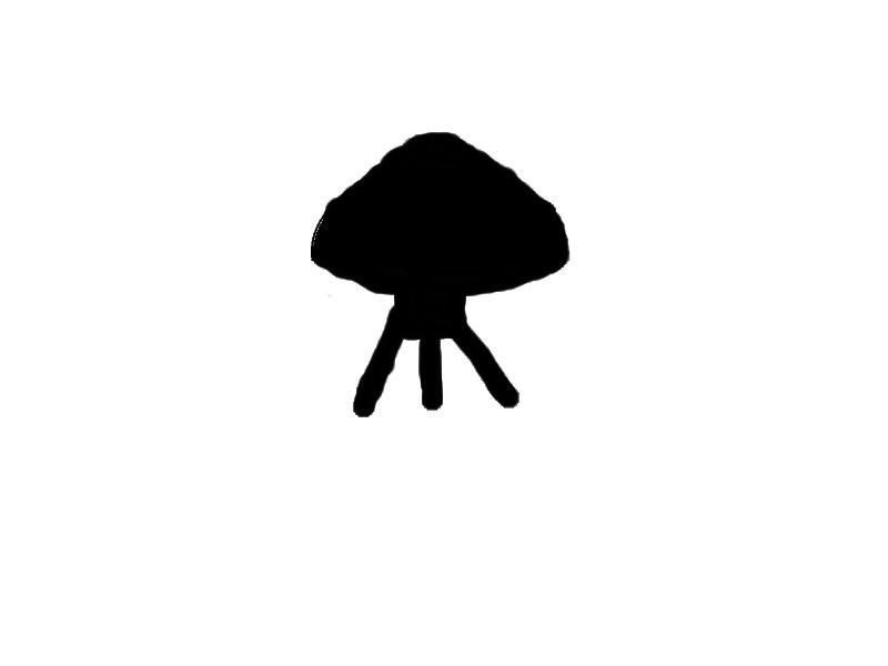 2010: Le 17/06 vers 13h00 -  objet noir - charleville mezieres - (08) Shemao10