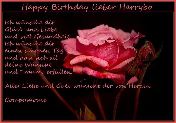 Happy Birthday Harrybo Harryb13