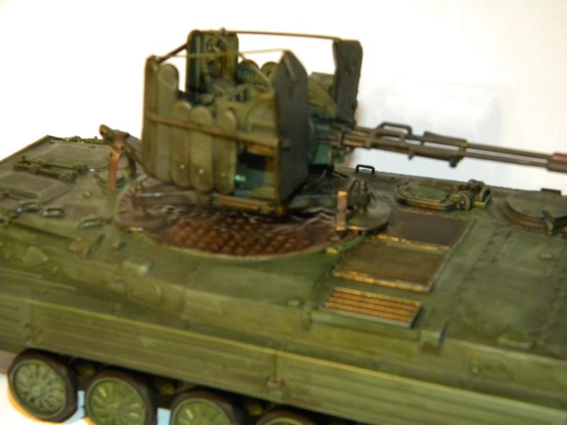 BMP2 Afghan terminé Bmp2_013