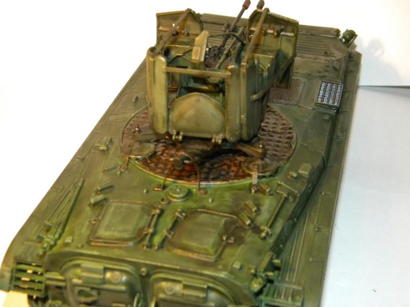 BMP2 Afghan terminé Bmp2_014