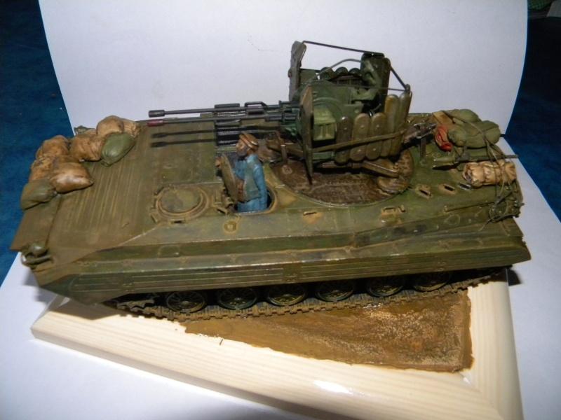 BMP2 Afghan terminé - Page 2 Bmp2j_10