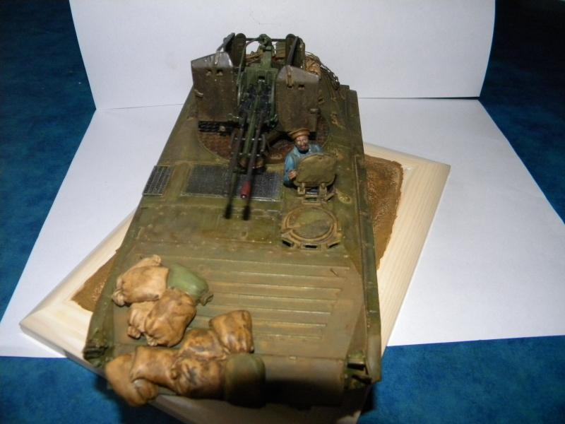 BMP2 Afghan terminé - Page 2 Bmp2j_11
