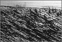 L'affaire de Tunguska de 1908 à nos jours Tungus11