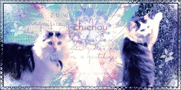 galerie puce photoshop - Page 5 Sans_t11
