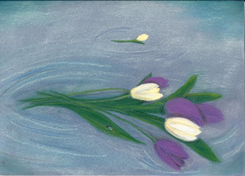 mes dadas Tulipa10