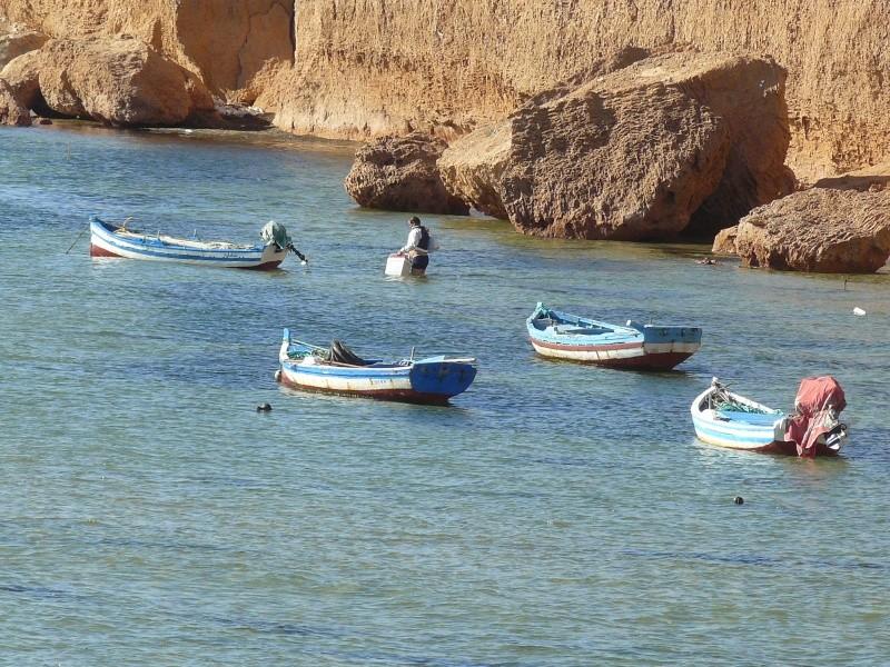 Séjour à Djerba Djerba31