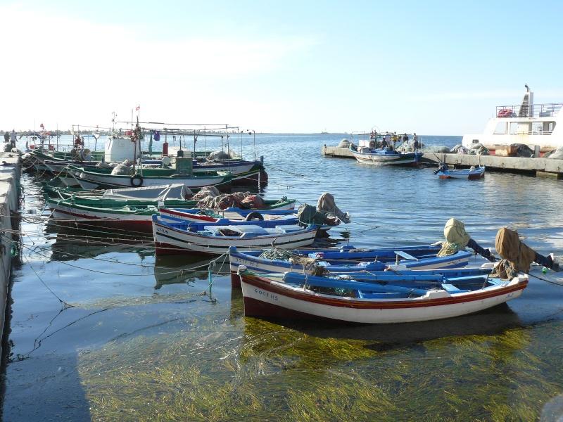 Séjour à Djerba Djerba32